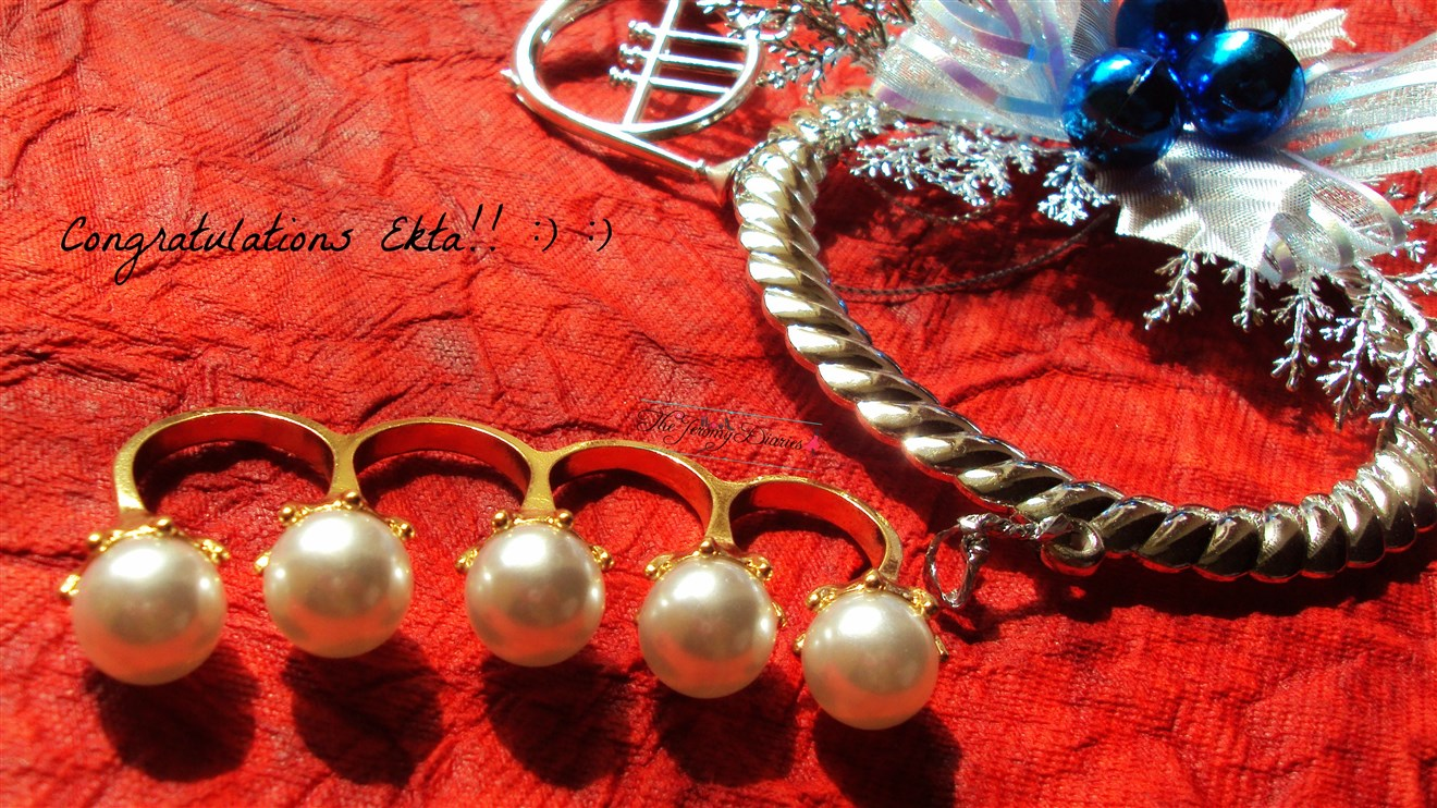 christmas blog giveaway winner ekta
