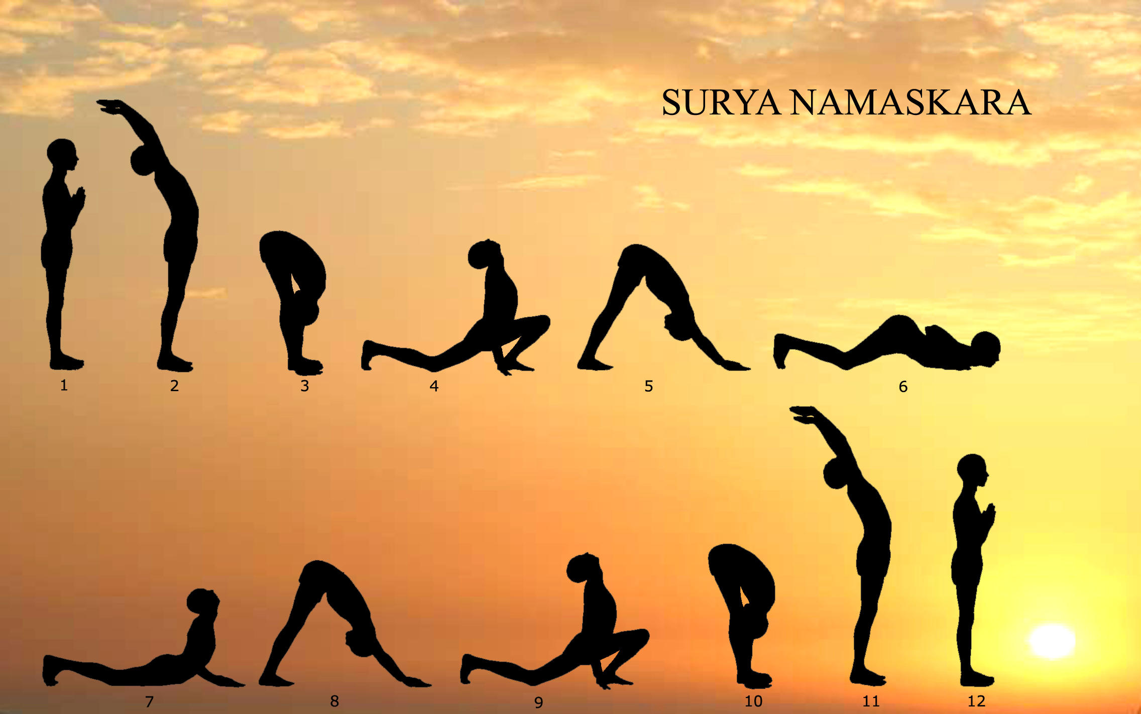 Basic exercises one has to perform to stay fit for beginners surya namaskar kristyandbryce Images