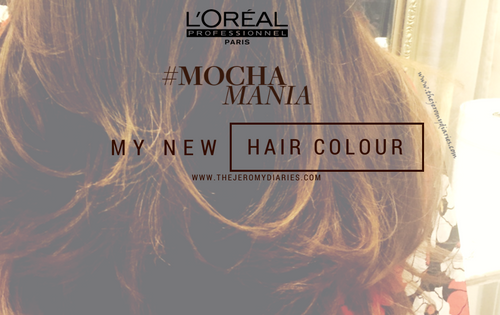l'oreal professionnel x the jeromy diaries mocha mania beauty blogger bangalore